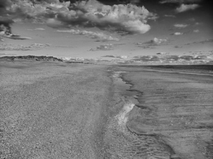 black_and_white_beach_by_denehy-d5c7rjh